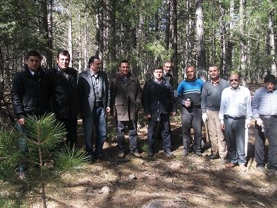 Beyşehir protokolü ormanda damga yaptı