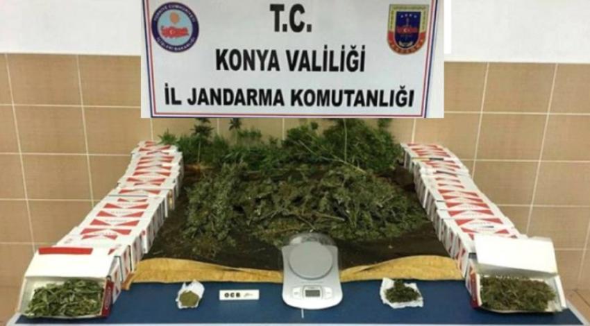 Hüyük'te Jandarmadan Uyuşturucu Operasyonu