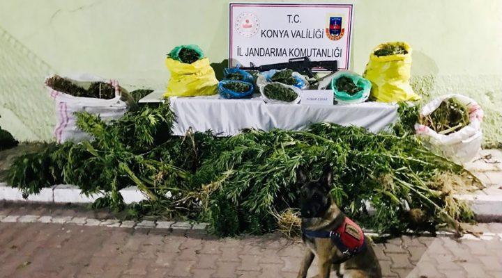 Beyşehir'de Jandarmadan Uyuşturucu Operasyonu