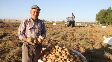 Beyşehir'de Cipslik patatesin ürün hasatı başladı